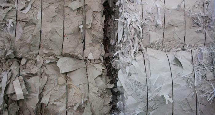 distruzione documenti sensibili bologna